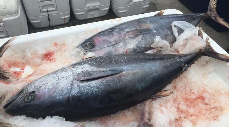 Pacific to Plate bill signed into law