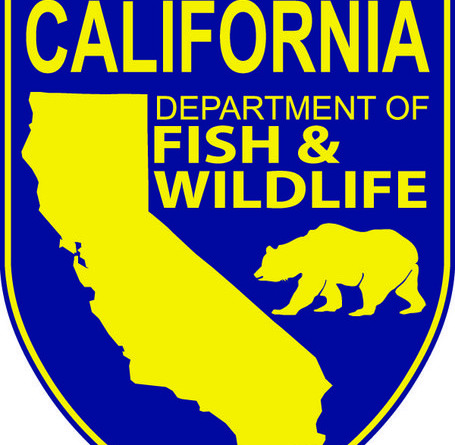 Dept. of Fish and Wildlife in-house survey results revealed