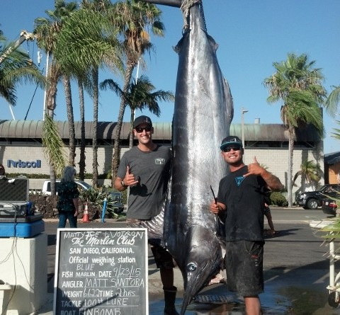 662-pound Blue Marlin reeled in near Point Loma