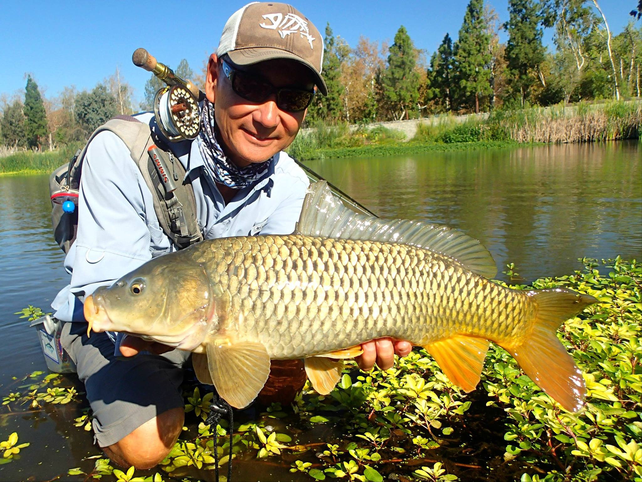 carp fishing with flies – fishrapnews, Fly Fishing Bait