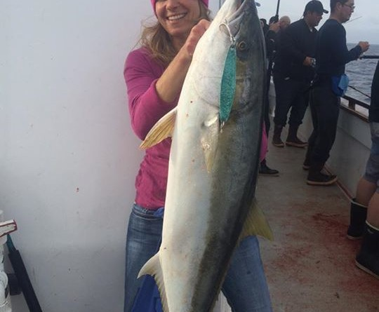 Wintertime yellowtail delight SoCal anglers