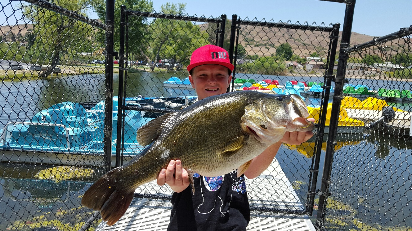 Small anglers catching big bass fishrapnews for Santee lakes fishing report