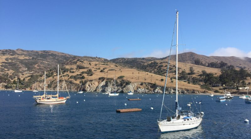 Catalina fishing