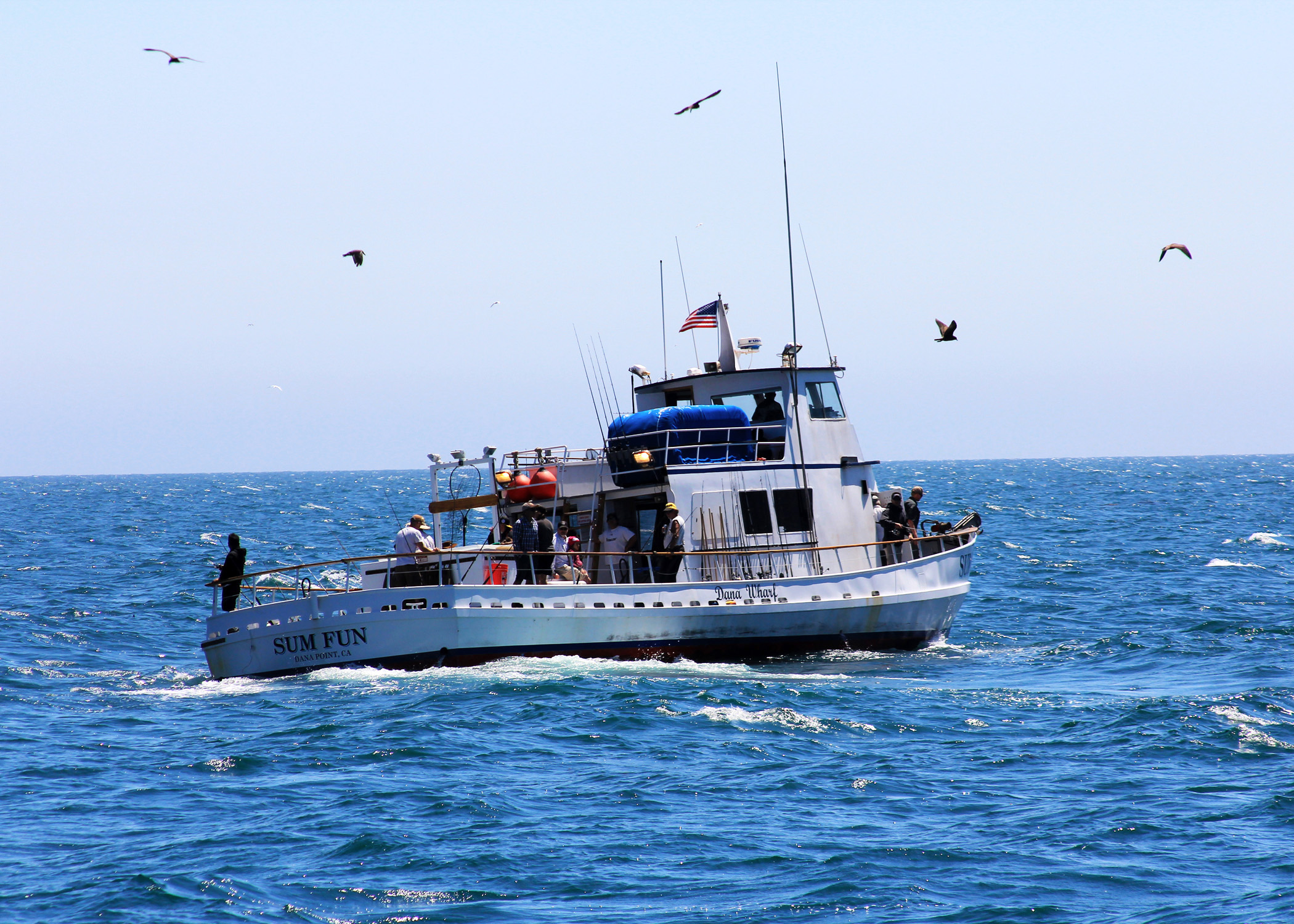 Report recreational fishing has 4 6 billion impact on for California department of fish and wildlife jobs
