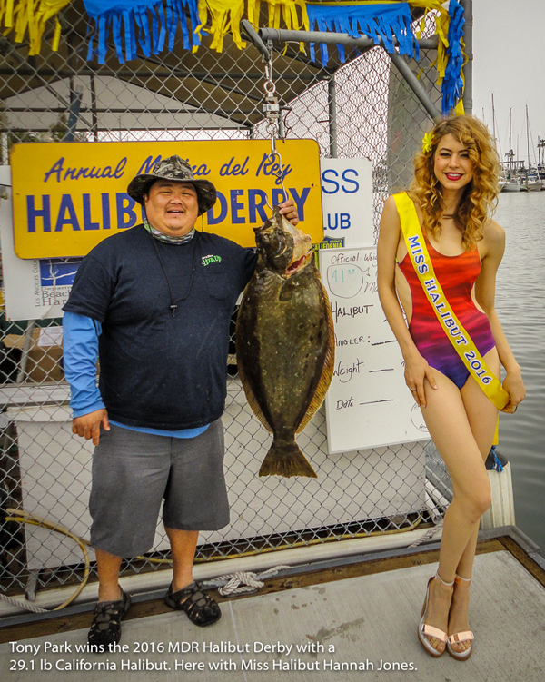 Marina del rey anglers to host 42nd halibut derby for Marina del rey fishing report