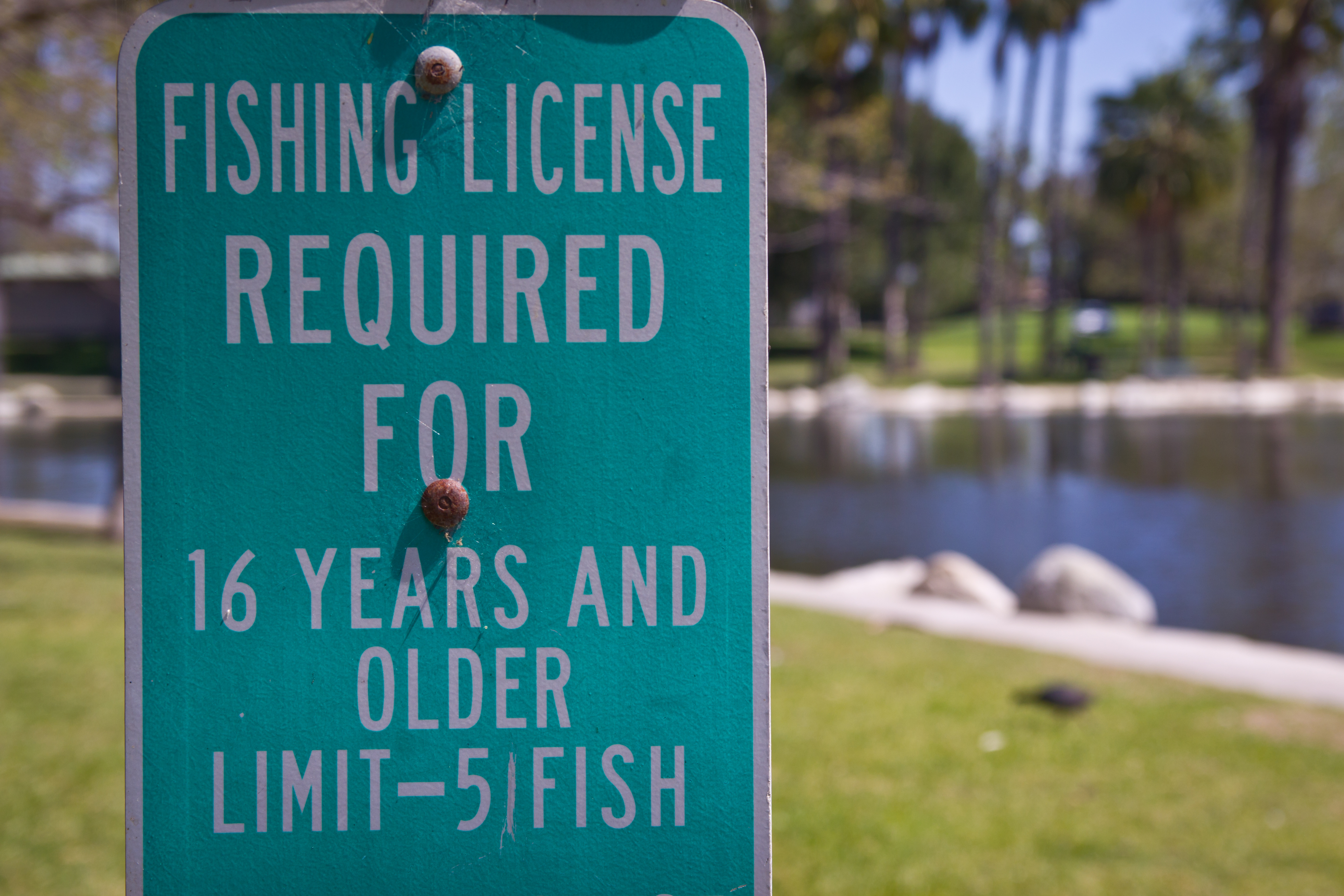 Junior fishing license bill clears assembly appropriations for California fishing license fee
