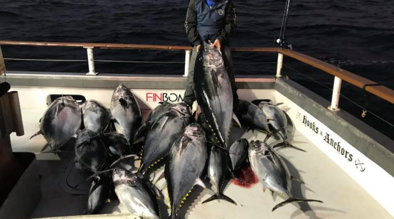Chief Sportfishing San Diego