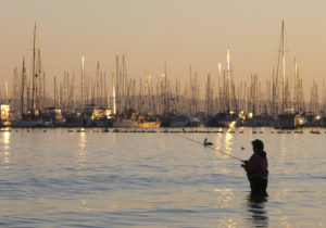 California Sportfishing License