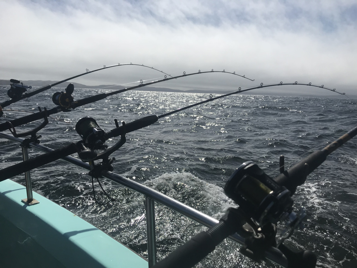 Assembly committee unanimously supports 365-day fishing license bill
