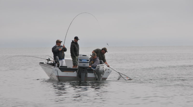 Fishing License Bill